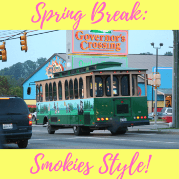 Spring Break: Smokies Style!