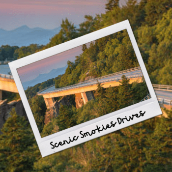 Scenic Drives in The Smokies